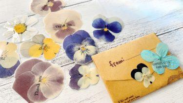 褪せた押し花も艶っと可愛くなる♡メッセージ付き押し花シート